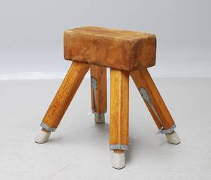 Gymnastikbuk